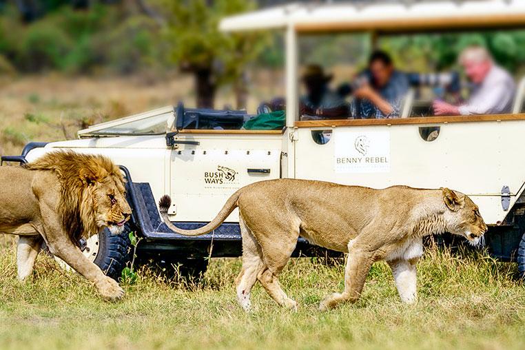 Fotosafari_Botswana_Fotoreise_Vic-Falls_08
