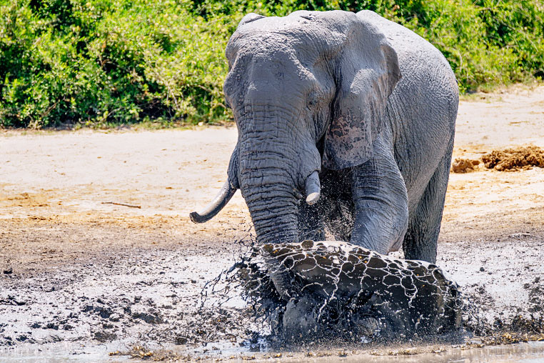 Fotosafari_Botswana_Fotoreise_Vic-Falls_13
