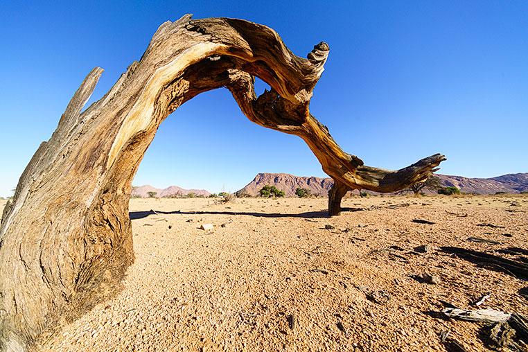 Fotosafari_Namibia_Fotoreise_Sueden_Afrika_02