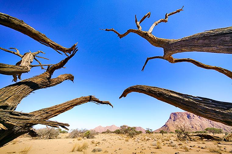 Fotosafari_Namibia_Fotoreise_Sueden_Afrika_03