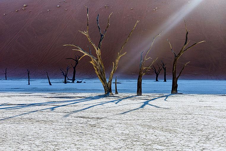 Fotosafari_Namibia_Fotoreise_Sueden_Afrika_13