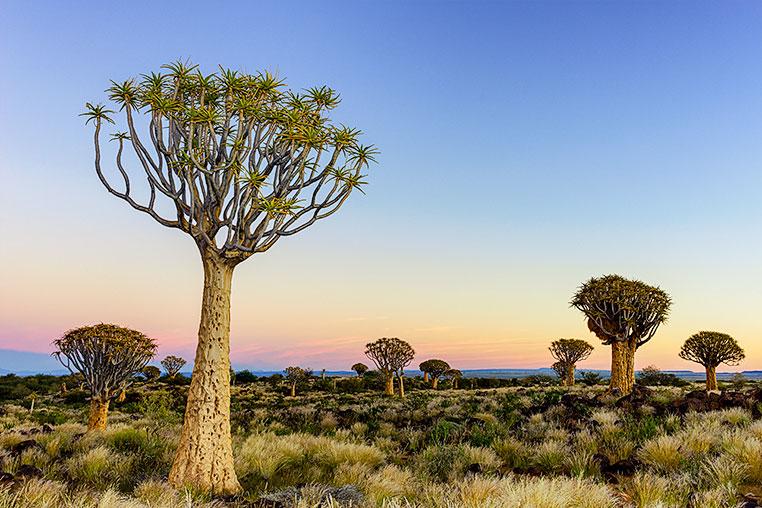 Fotosafari_Namibia_Fotoreise_Sueden_Afrika_31