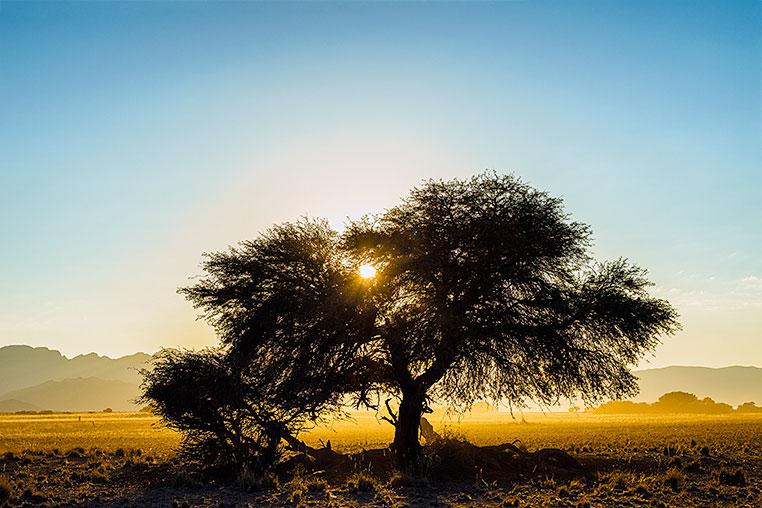 Fotosafari_Namibia_Fotoreise_Sueden_Afrika_38