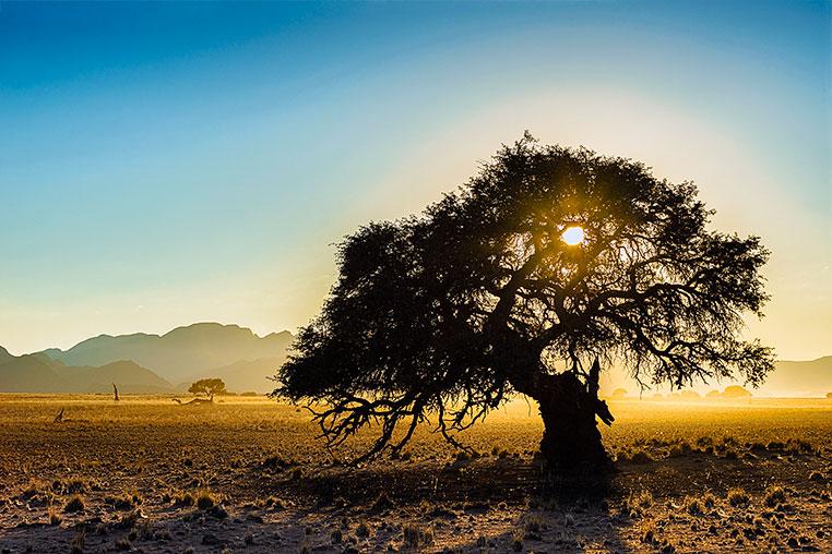 Fotosafari_Namibia_Fotoreise_Sueden_Afrika_39