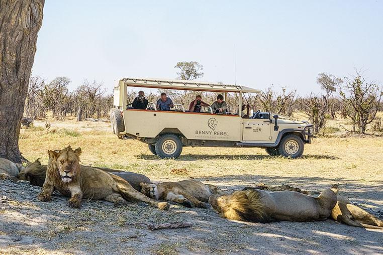 Fotosafari_Simbabwe_Fotoreise_Botswana_43