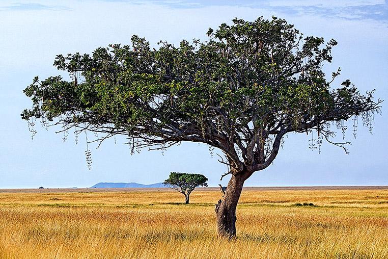 Fotosafari_Tansania_Fotoreise_Afrika_09