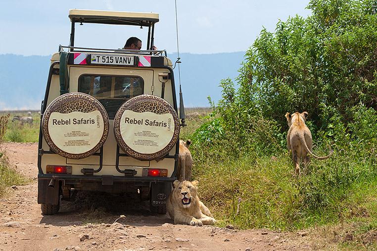 Fotosafari_Tansania_Fotoreise_Afrika_23