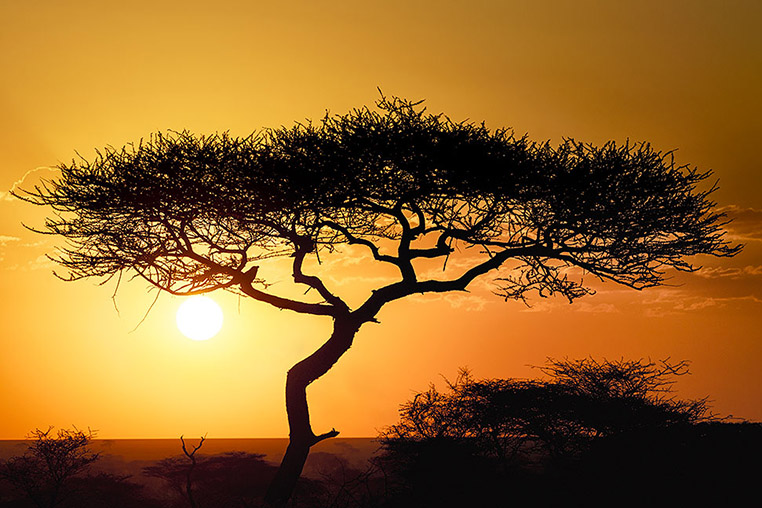 Fotosafari_Tansania_Fotoreise_Afrika_26