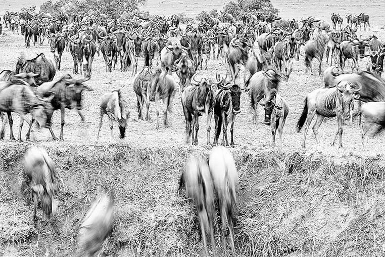 fotoreise-kenia-fotosafari-afrika-075