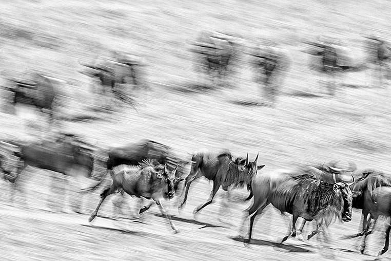 Fotoreise nach Tansania
