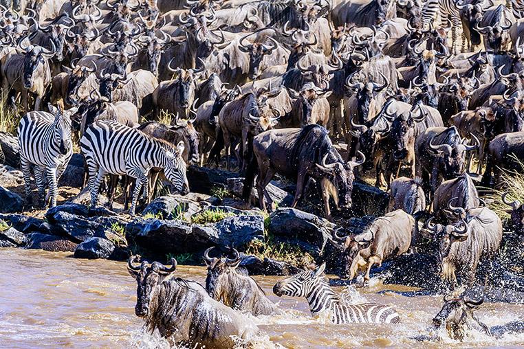 Fotosafari_Tansania_Fotoreise_Kenia_Afrika_06