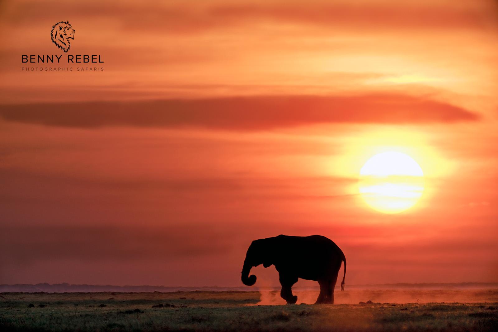 Fotoreise nach Botswana