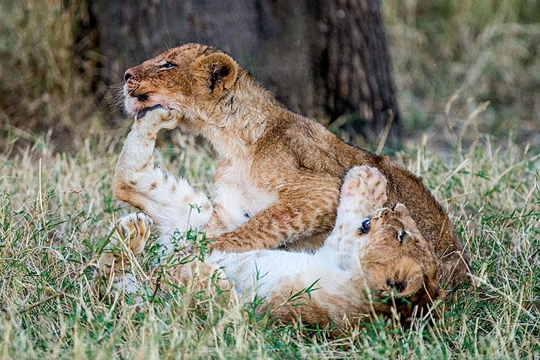 Fotosafari-Afrika-Fotoreise_10