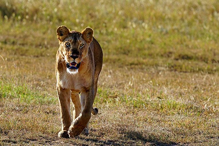 Fotosafari-Afrika-Fotoreise_11