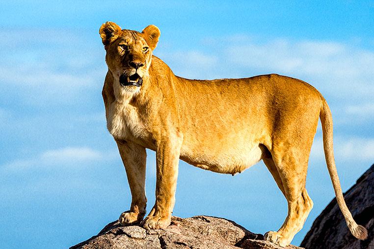 Fotosafari-Afrika-Fotoreise_13