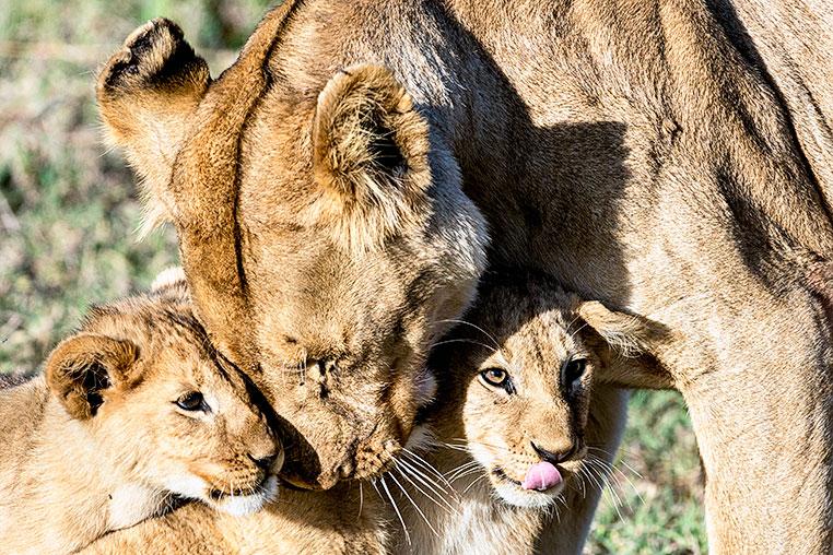 Fotosafari-Afrika-Fotoreise_14