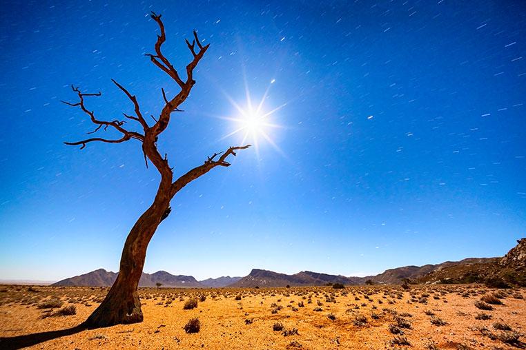 Nachtfotografie auf der Fotosafari Namibia