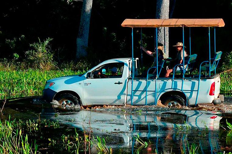 fotoreise-pantanal-fotosafari-brasilien-052