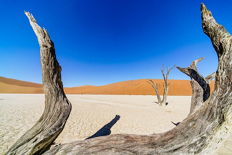 Fotosafari durch Namibia