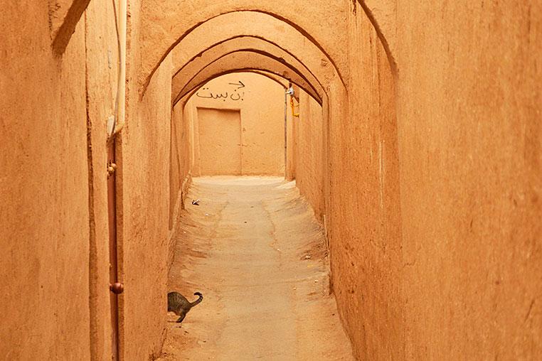 fotoreise-iran-fotosafari-104