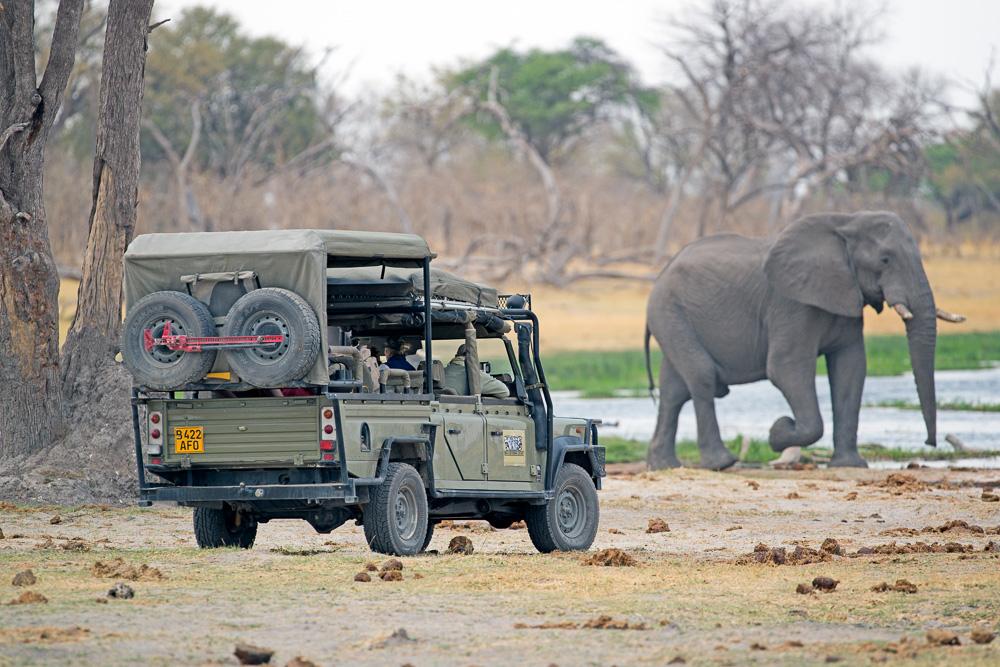 Fotoreise-Fotosafari-Botswana-Benny-Rebel-Afrika-Simbabwe-7