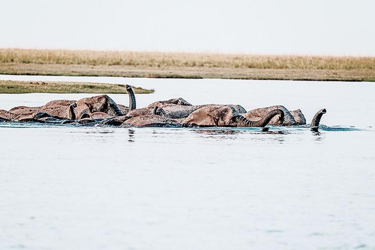 Fotosafari_Simbabwe_Fotoreise_Botswana_37