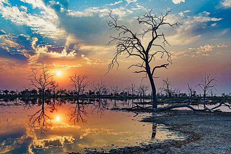 Fotosafari_Simbabwe_Fotoreise_Chobe-Nationalpark_04