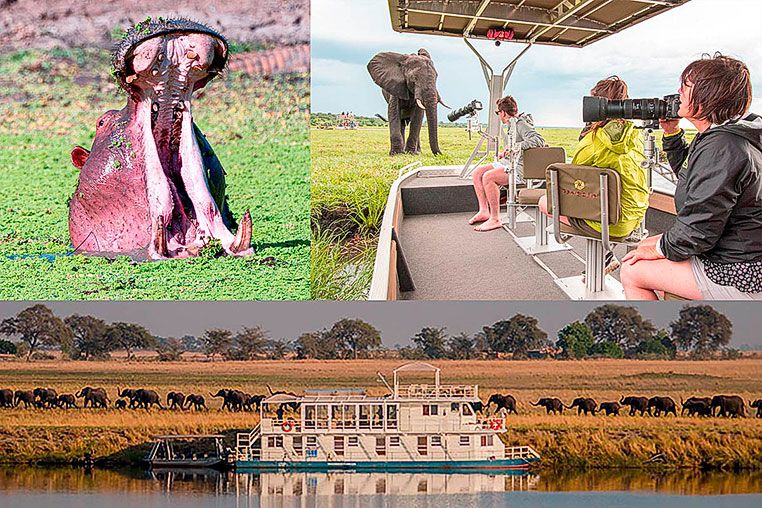 Fotosafari_Simbabwe_Fotoreise_Chobe-Nationalpark_24