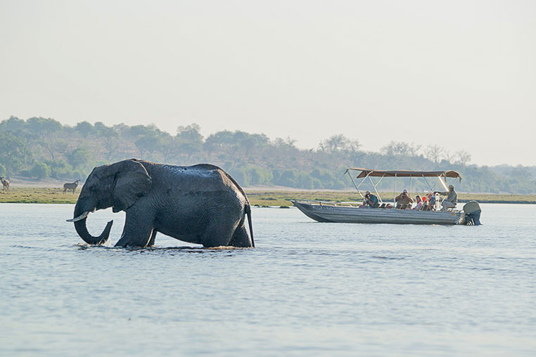Fotosafari_Simbabwe_Fotoreise_Chobe-Nationalpark_26