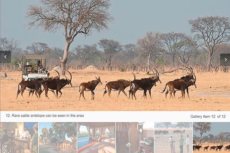 Fotosafari_Simbabwe_Fotoreise_Davisons_Camp_07