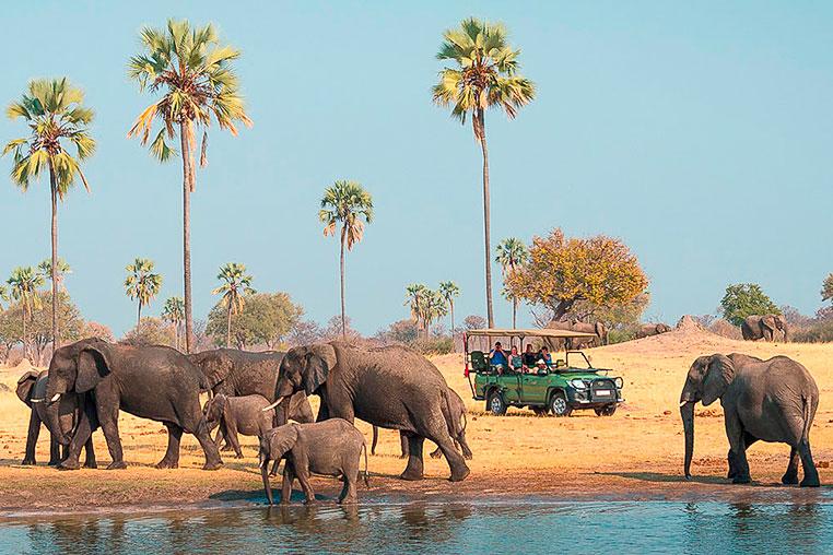 Fotosafari_Simbabwe_Fotoreise_Davisons_Camp_13