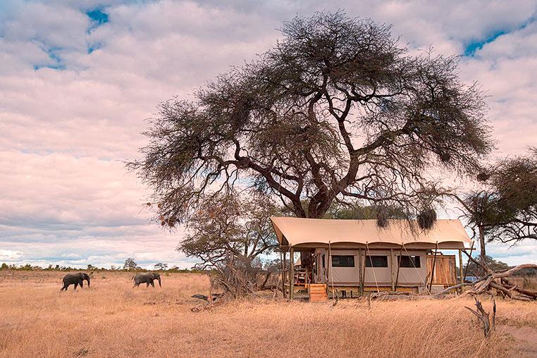 Fotosafari_Simbabwe_Fotoreise_Somalisa_expedition_16
