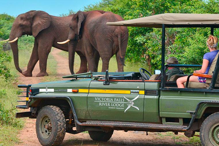 Fotosafari_Simbabwe_Fotoreise_Vic-Falls_River_Lodge_12