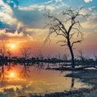 Bild des Tages: Fotoreise Simbabwe, Die Spiegelung