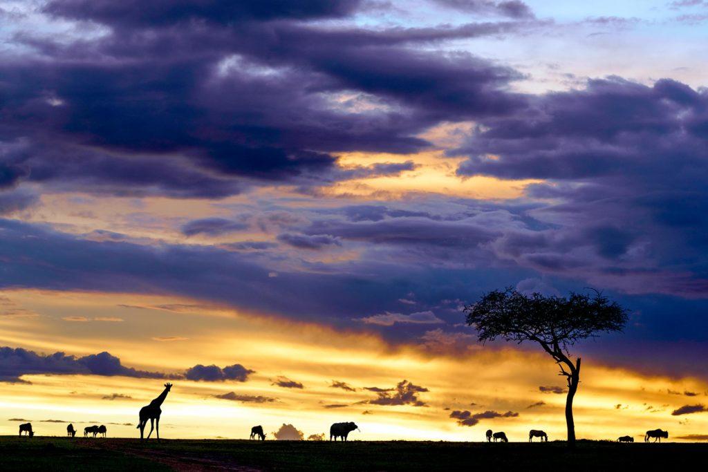 Massai Mara Sonnnenuntergang auf einer Fotoreise mit Benny Rebel