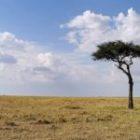 Livebericht: Fotoreise Kenia, Landschaftsfoto