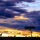Auf Fotoreisen Sonnenuntergänge fotografieren