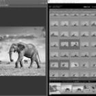Coaching bei der Fotografie und Medienproduktion in der Schweiz