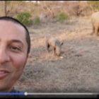 Die Corona-Pandemie und die Wilderei in den Nationalparks