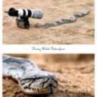Ungewöhnliche Fotografie-Möglichkeiten auf Fotoreisen