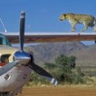 Meine ersten Werbe-Auftragsfotografien in Afrika