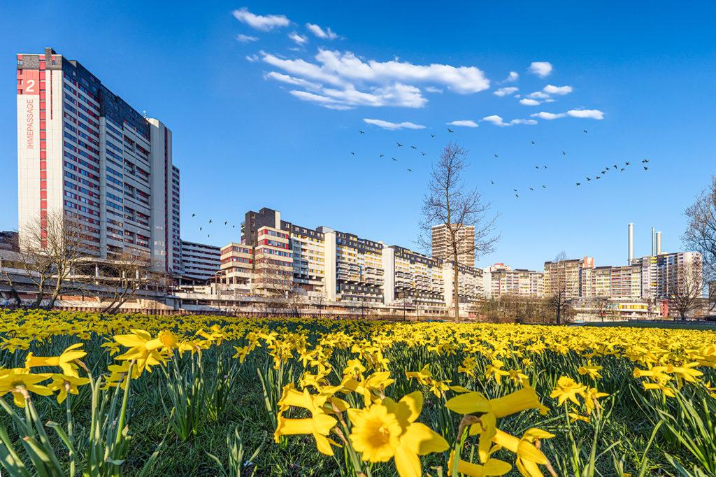 Das Ihmezentrum in Hannover mit Osterglocken fotografiert von Benny Rebel