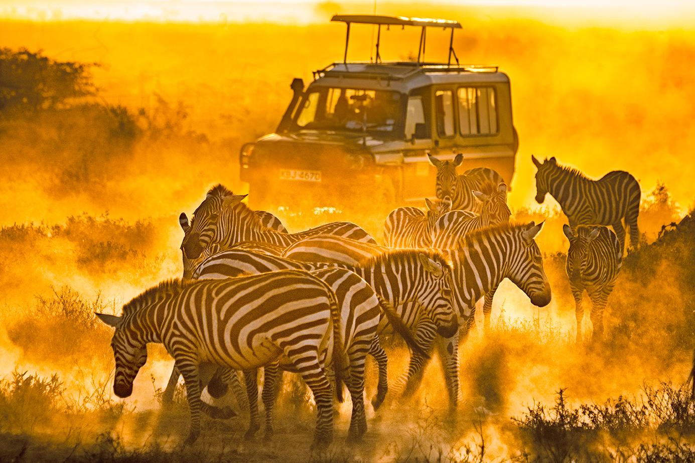 Kenia-Fotoreise - Amboseli Nationalpark - Sonnenuntergang - Zebras - Staub