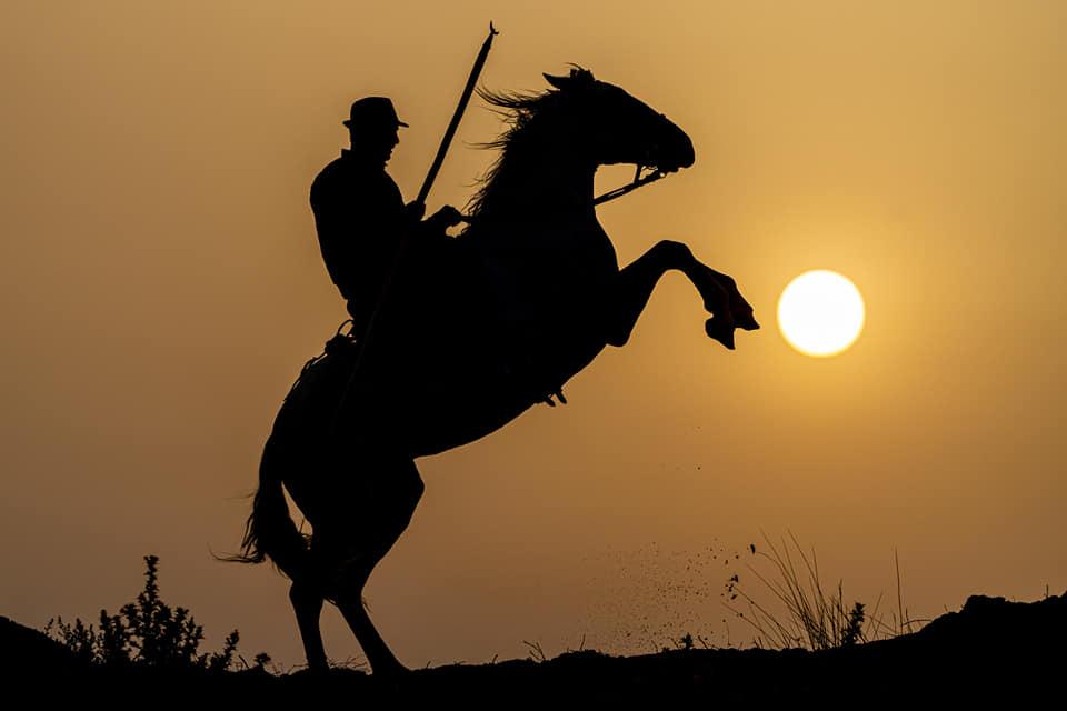 Camargue Reiter im Sonnenaufgang - fotografiert auf einer Fotoreise durch Südfrankreich mit Benny Rebel Fotosafaris GmbH