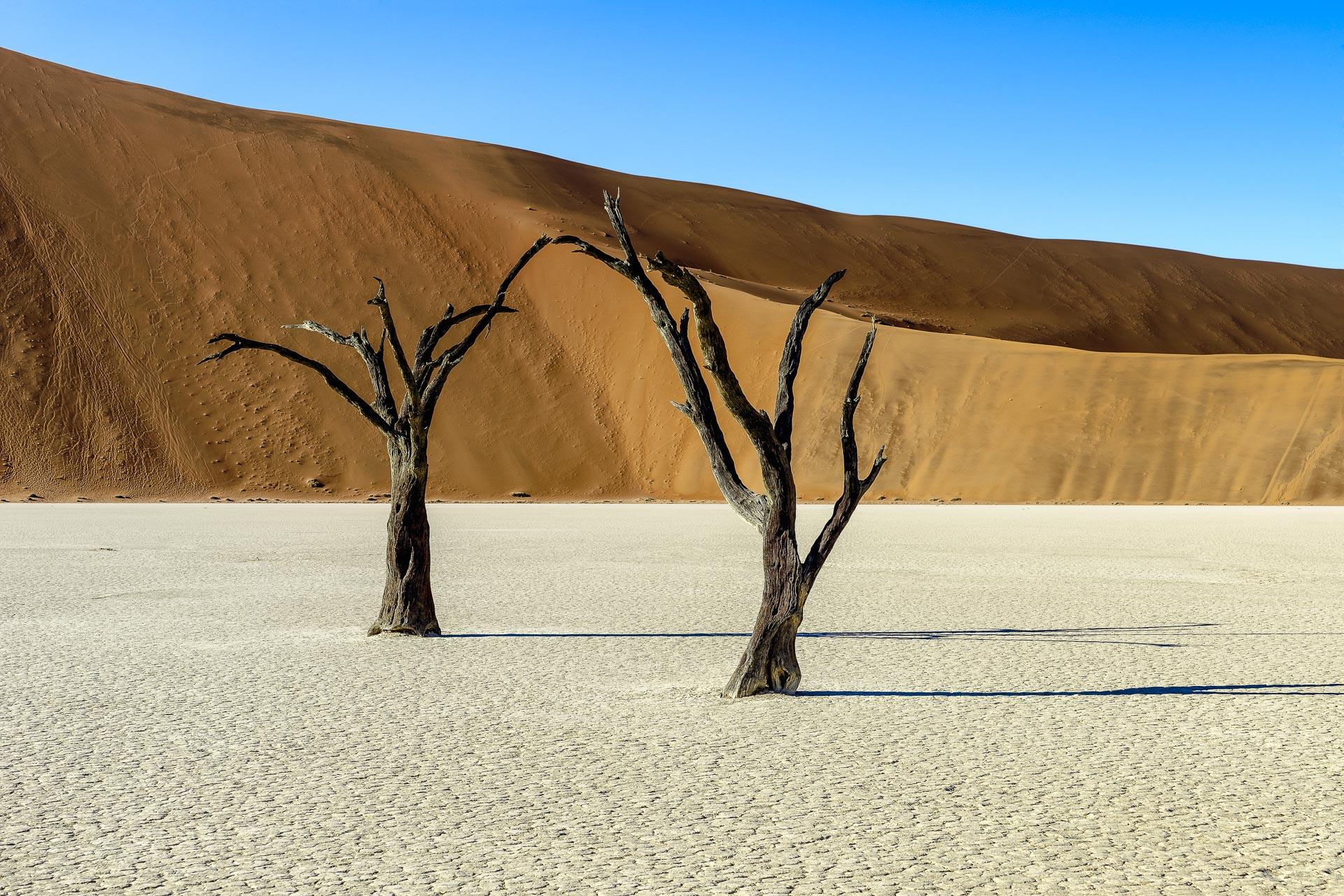 fotoreise-fotosafari-hd-2021-362-Namibia