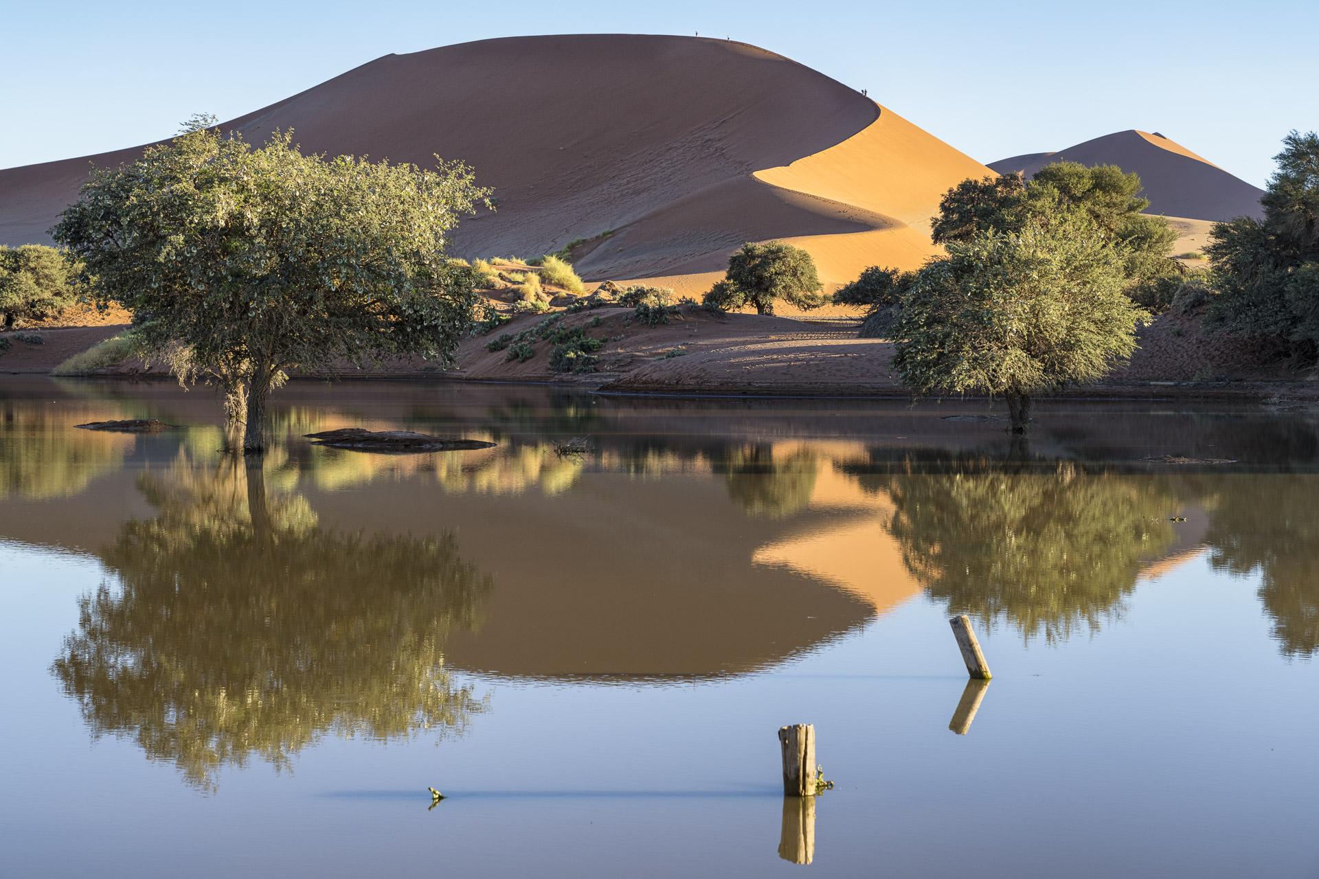 fotoreise-fotosafari-hd-2021-477-Namibia