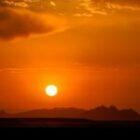 Grüße aus der Namib-Wüste